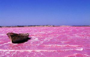 lac rose lieux insolites