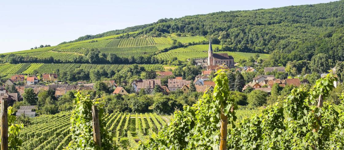 strasbourg route des vins