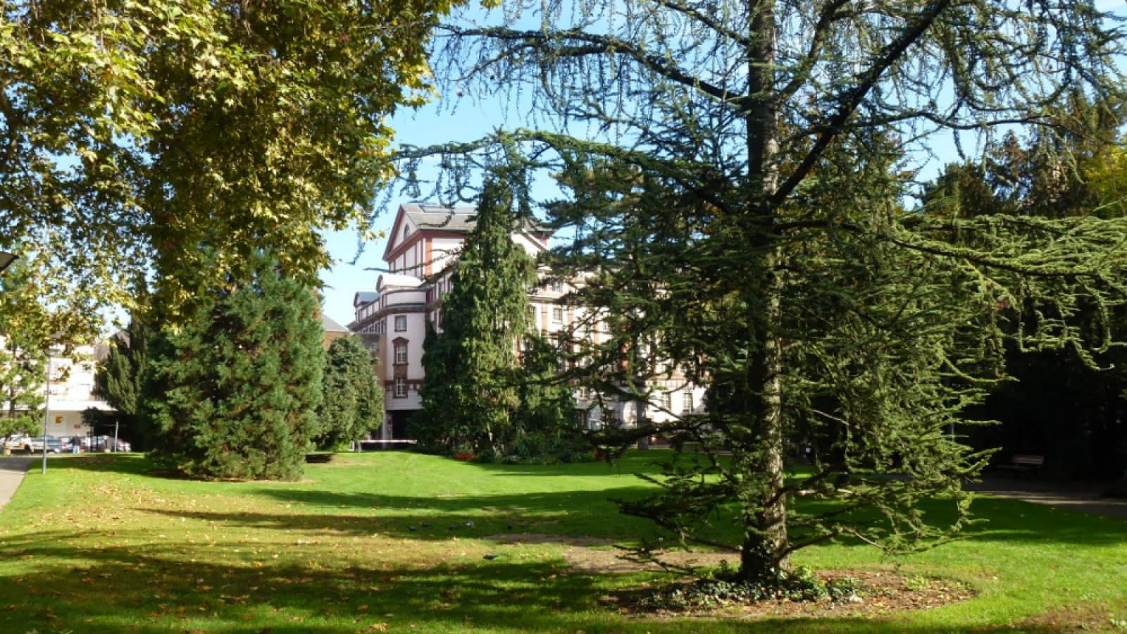 square Steinbach mulhouse